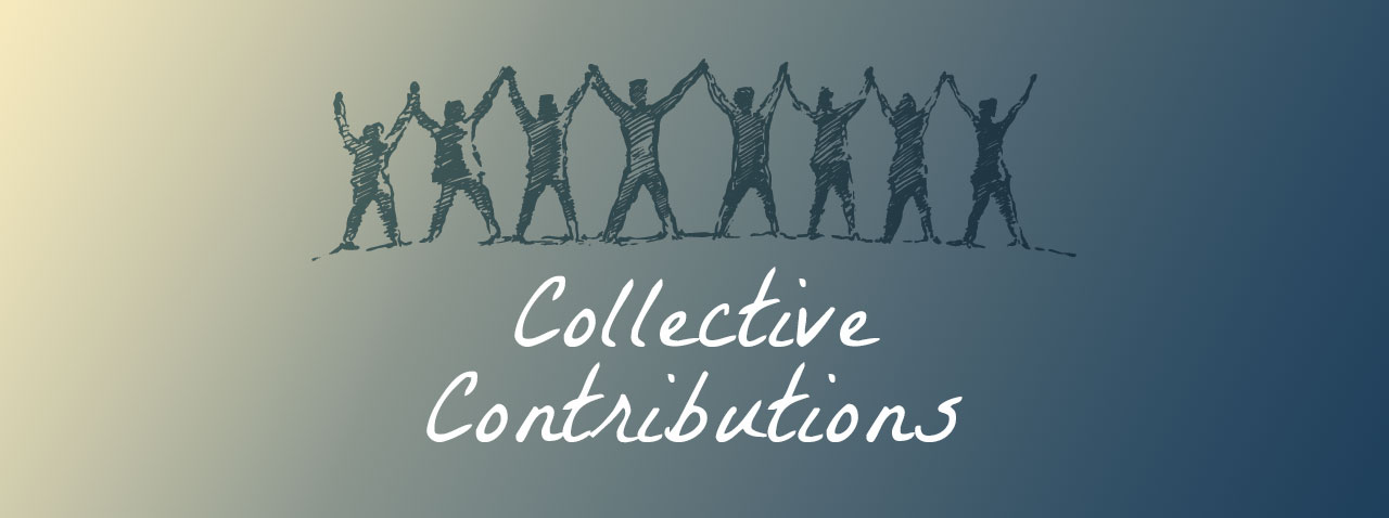Holistic New Hampshire Collective Contributions